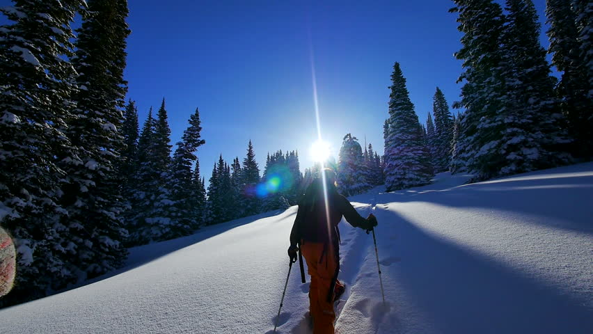Washington, Utah, Alaska, Oregon, Wyoming, 2012. 2 skies with backpack climb uphill on a sunny day, mountain surrounded by snow covered trees, blue sky