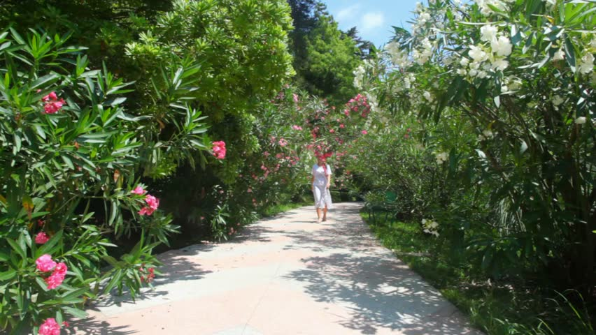 young happy woman walking on way in garden with blossoming flowers  - HD stock video clip