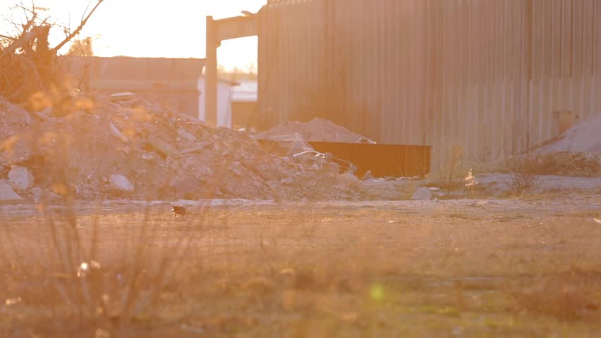 Pan shot of a field with piles of rubble