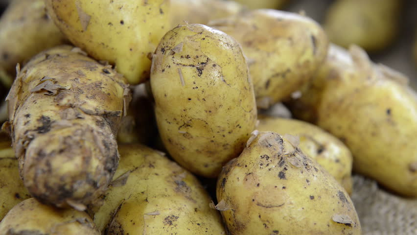 Fresh Potatoes (loopable video) - HD stock video clip