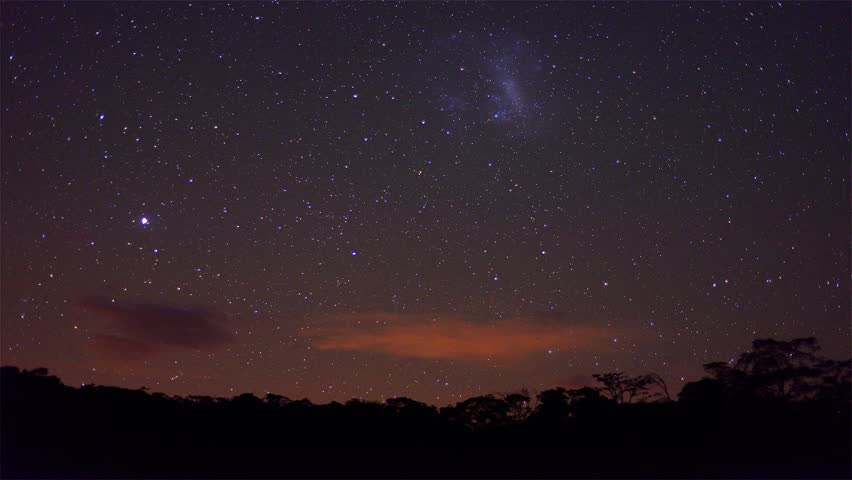 Starry night sky time lapse with tropical forest in the foreground