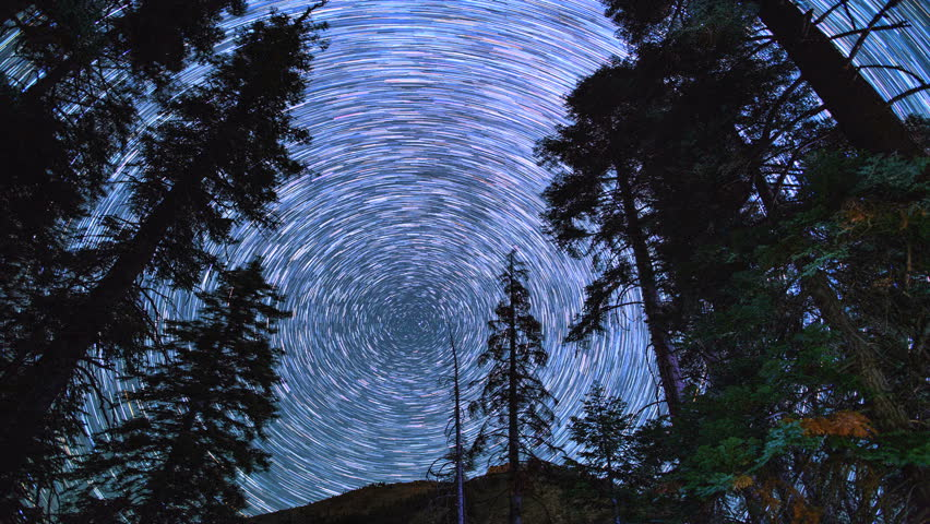 Circular Star Trails Over Mountains and Pine Trees in Galaxy Night Sky Timelapse. Shot at Mineral King in King's Canyon/Sequoia National Park.