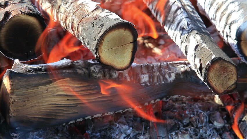 Closeup of warm fire burning in a campfire - HD stock video clip