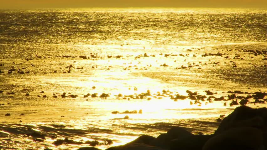 Golden Sunset at the Ocean - HD stock footage clip