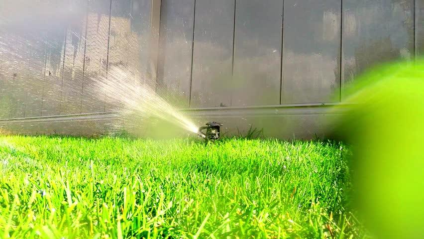 oscillating lawn sprinkler watering grass in backyard garden
