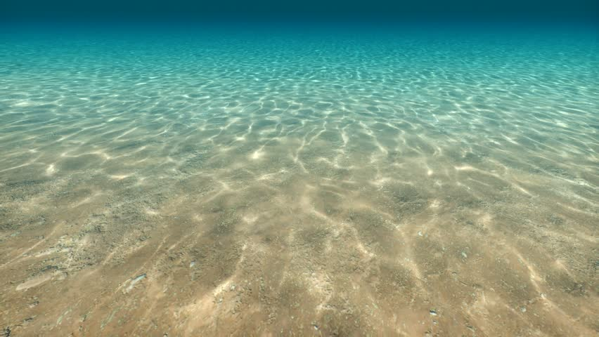 High quality Looping animation of ocean waves from underwater with floating plancton. Light rays shining through. Great popular marine Background | Shutterstock HD Video #7361104