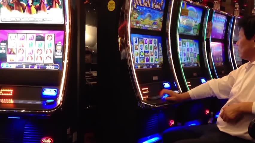 Starlight casino tournament