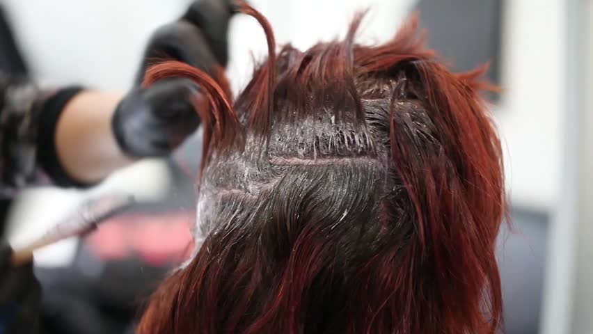 Video of hairdresser dyeing client's hair, closeup shot.