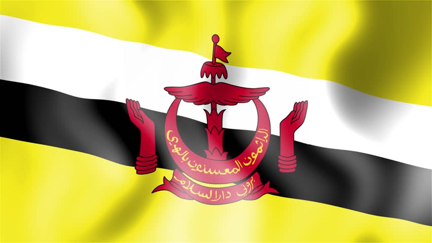 Image result for free stock images billowing brunei flag