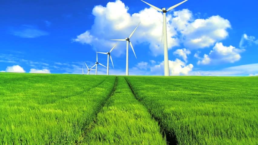 Denmark. Windmill In Green Field. Stock Footage Video