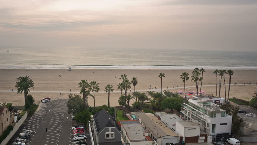 Beach Scenic - Palms Trees and Sandy Beach in Santa Monica Los Angeles California - Ocean in LA at Sunset in Early Evening | Shutterstock HD Video #8325364