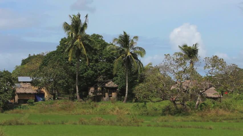 Primitive village in the jungle in the Philippines