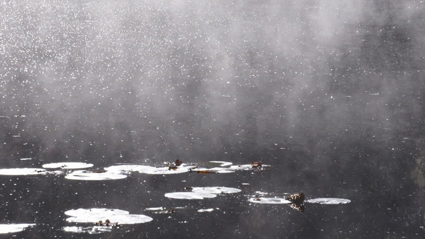 Morning mist swirls over lake with water lilies, autumn, Hampshire, England. - HD stock video clip