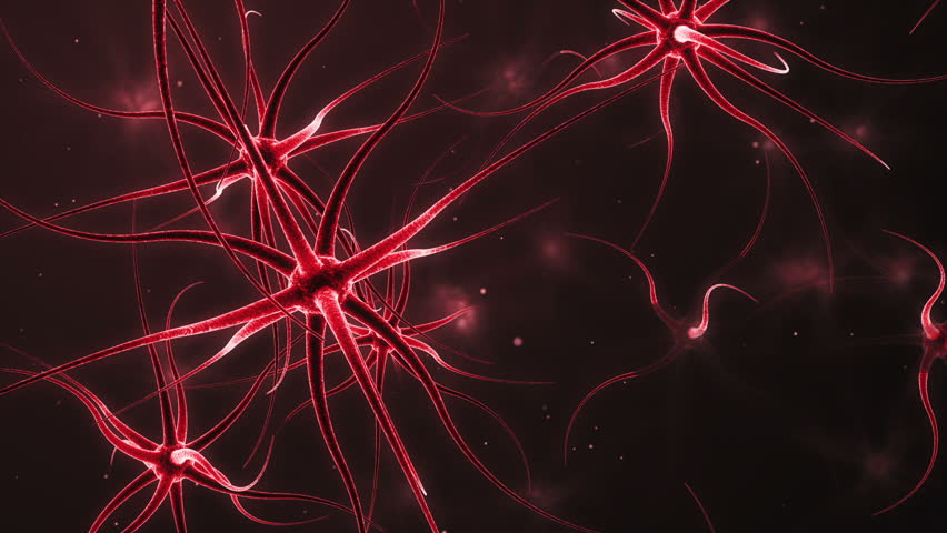 Computer generated neurons forming a neural network - HD stock video clip