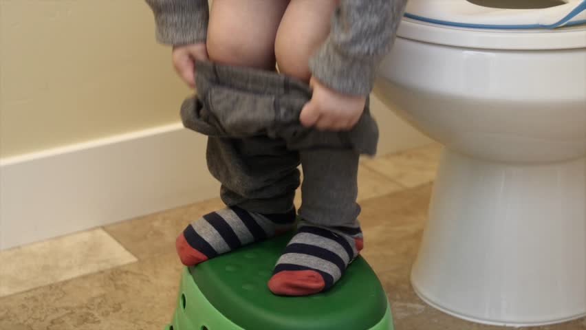 A toddler being potty trained uses the toilet