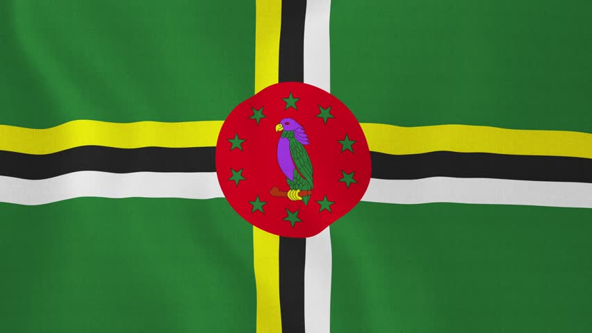 the background of the commonwealth of dominica Latest travel advice for dominica including safety and security, entry  although  there's no recent history of terrorism in dominica, attacks can't be ruled out   help from the uk government, contact the nearest british embassy,.