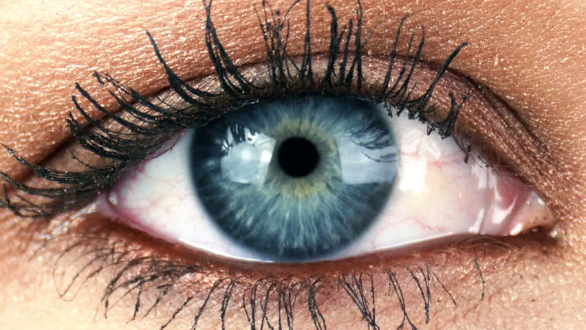 Close-up Macro Shot of Female Human Eye Blinking 4K | Shutterstock HD Video #8991571