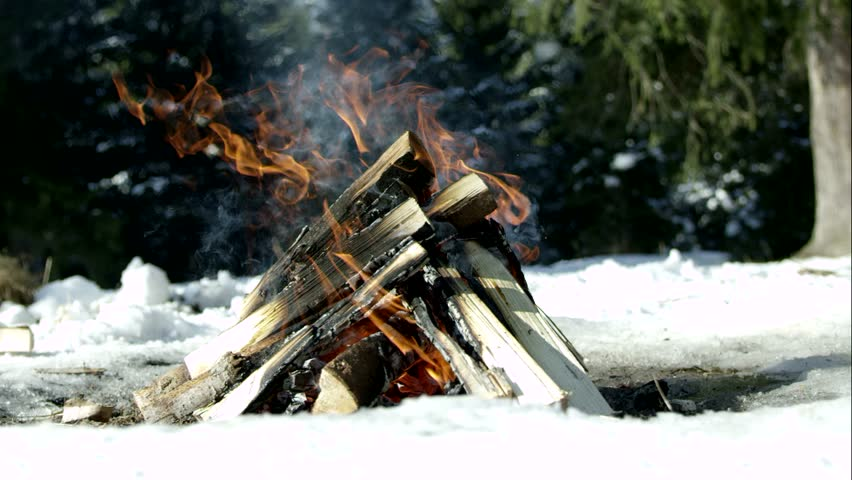 camping fire in a winter forest