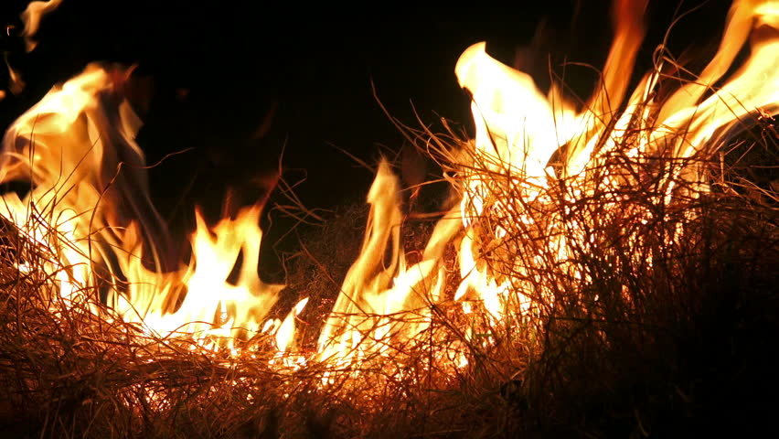 4K Fire Flame Isolated On Black Background. UHD Stock ...