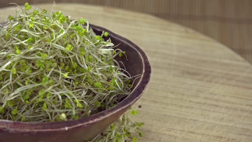 Rotating Broccoli Sprouts (not seamless loopable 4K footage)