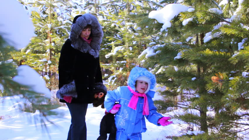 Little girl with mother walking outdoor in the winter pine forest - HD stock video clip